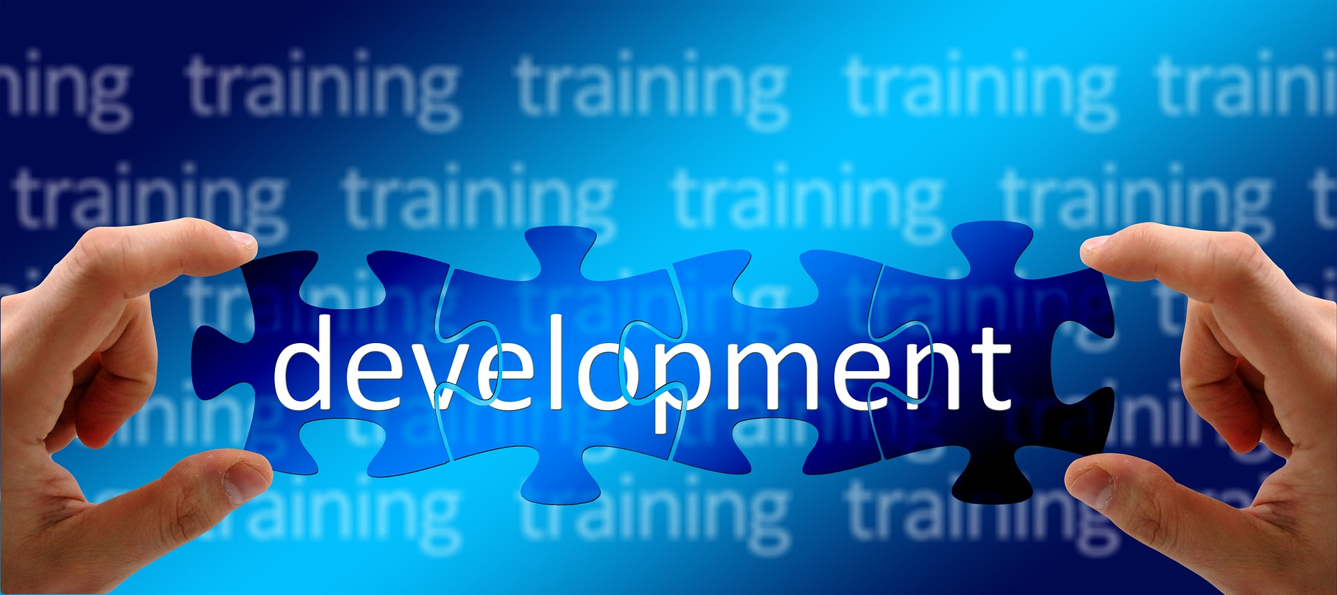 talent development 2